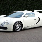 bugatti-veyron-f1-license-plate-2009-2